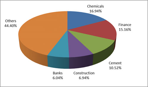 Graph 4:Top portfolio holdings in Axis Small Cap Fund