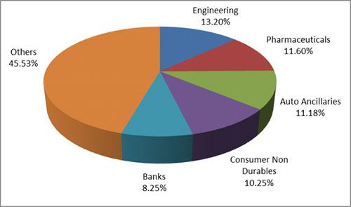 Graph 4:Top portfolio holdings in DSP Midcap Fund-1
