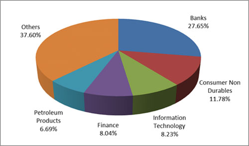 Graph 4: Top portfolio holdings in Mirae Asset Tax Saver Fund-2