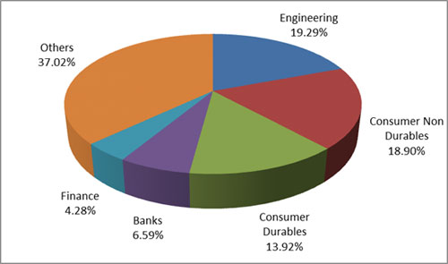 Graph 4:Top portfolio holdings in SBI Small Cap Fund-2